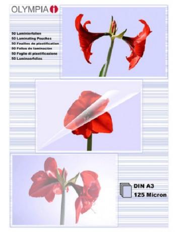 Διαφάνειες, Ζελατίνες,Φύλλα Πλαστικοποίησης Α3 125mic.