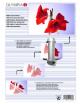 Διαφάνειες, Ζελατίνες,Φύλλα Πλαστικοποίησης Α4 125mic.